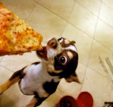 Cheektowaga Pizzeria